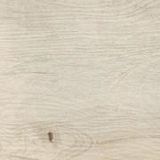 Woodwork Poplar